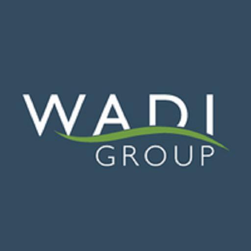 Wadi Group